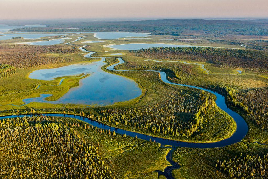 preservation-foret-boreal-3