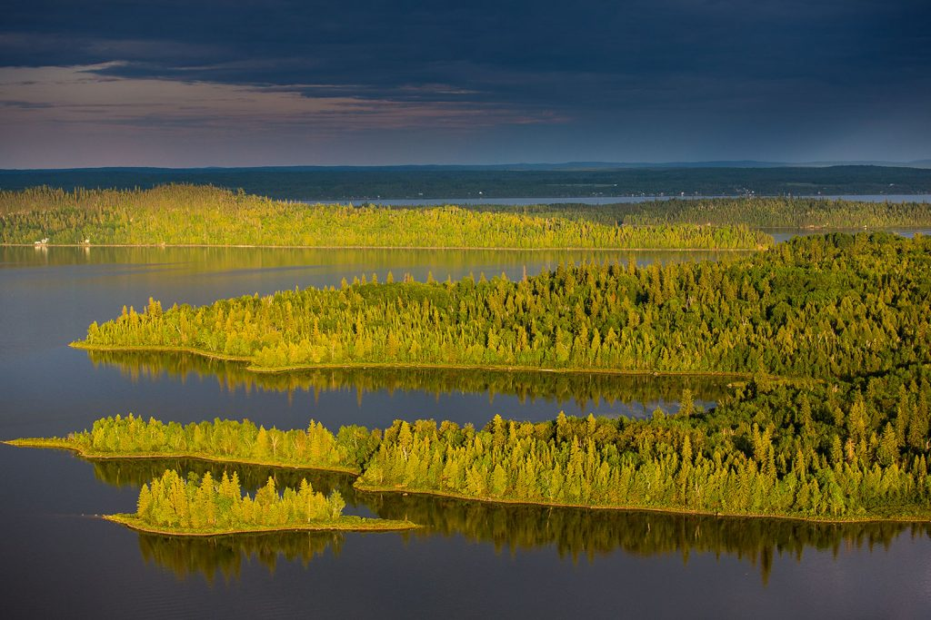 preservation-foret-boreal-5