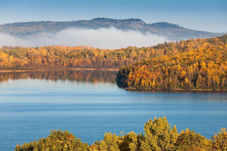 preservation-foret-boreal
