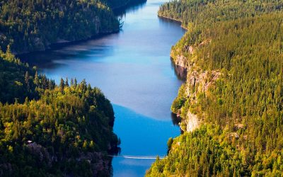 17% d'aires protégées au Québec: le point de vue de Richard Desjardins et Henri Jacob