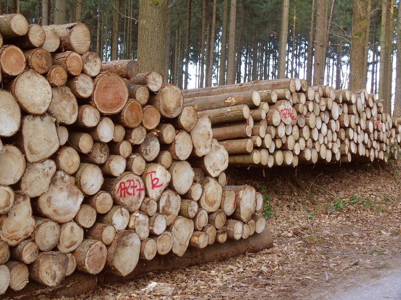 wood-2014868_1280