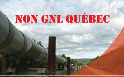 Pétition de l'Action Boréale: « NON au gaz fossile de GNL Québec »