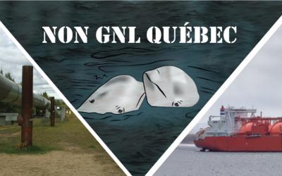 Pétition : Non au gaz fossile de GNL